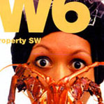SW MAG COVER