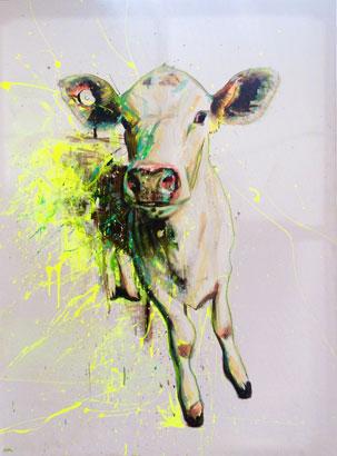 Cow Crazy
